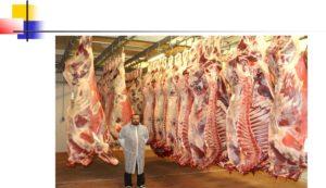 Processed HALAL Meat – Old Riiga